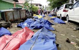 גופות הנספים בצונאמי באינדונזיה