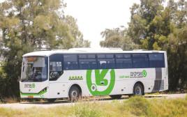 אוטובוס של חברת אפיקים