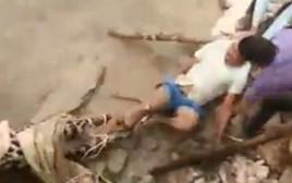 הותקף בידי נמר שניסה להציל