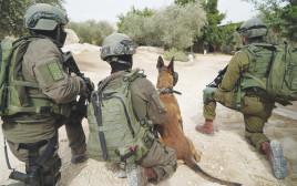 """חיילי צה""""ל במצור על בית המחבל"""