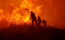 שריפה גדולה ביער שוקדה