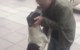 מצא את כלבו אחרי שחיפש אחריו 3 שנים