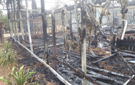 השריפה בחווה