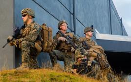 """חיילי מארינס של צבא ארה""""ב באיסלנד"""