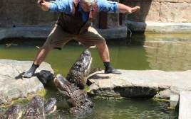 ניסה לקפוץ מעל בריכת תנינים