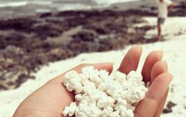 חוף הפופקורן