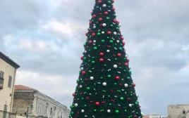 עץ אשוח בכיכר השעון ביפו