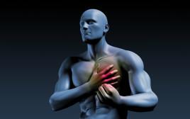 """""""סינדרום מטבולי"""" מגדיל את הסיכון לאירוע לב או אירוע מוחי"""