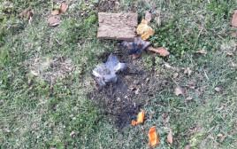 בלוני התבערה שנפלו במועצה האזורית אשכול