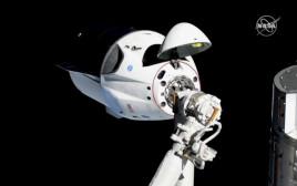 קפסולת החלל dragon crew מבית SpaceX