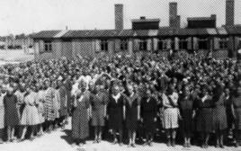 """""""קיים עולם אנושי וצודק מעברה השני של גדר התיל"""": אושוויץ בירקנאו"""
