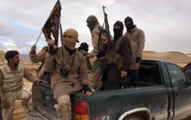 פעילי אל-קאעידה