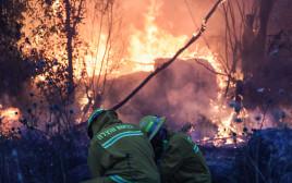 שריפות ליד קיבוץ הראל