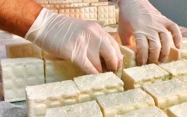 הכנת גבינת פטה