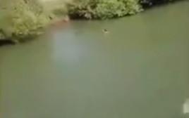 חמושים פתחו באש לעבר מתרחצים בנהר הירדן