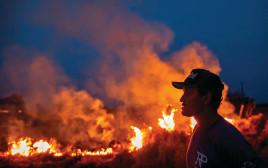 השריפה באמזונס