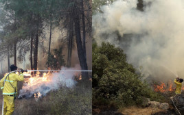 שריפות ברחבי הארץ