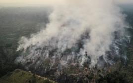 השריפה ביערות הגשם באמזונס