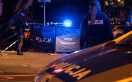 משטרת פולין