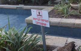 בריכת הנוי בה התחשמלו הצעירים בתל אביב