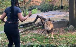 גן החיות ברונקס במדינת ניו יורק