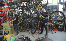 אופניים, אילוסטרציה (למצולמים אין קשר לנאמר בכתבה)