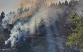 השריפה באזור עמינדב