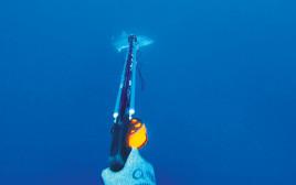 דיג ברובה