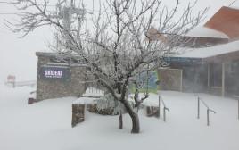 שלג בהר חרמון