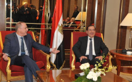 שטייניץ עם שר החוץ המצרי