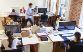 עובדים שכירים במשרד