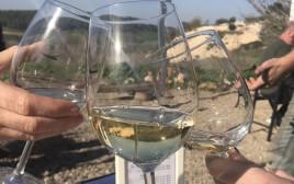 יין לבן בשמש