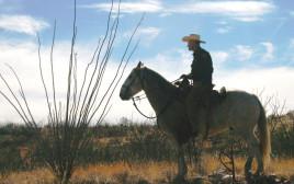 """מדינת אריזונה בארה""""ב"""