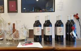 טעימת יינות יתיר, מרכז 'איש הענבים'
