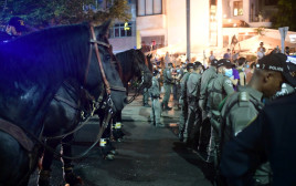 סוסים בהפגנה בתל אביב