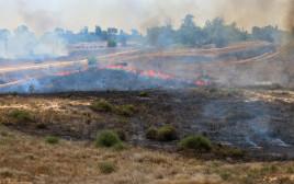 שריפה שפרצה בעוטף עזה כתוצאה מבלון תבערה
