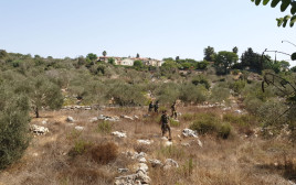 זירת ניסיון פיגוע באריאל