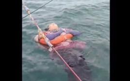 אנג'ליקה גייטן, הנעדרת שנמצאה בלב הים