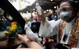 כומר קתולי מברך את הציפורים