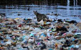 אשפת פלסטיק מציפה את הים