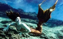 שיר פרג' שוחה עם סנפיר מתחת למים