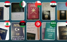 מסרי תמיכה בישראל ממדינות ערב