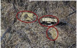 זירת המטענים שנחשפה בגבול סוריה