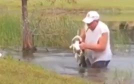ריצ'רד וילבנקס מציל את גור הכלבים שלו משיניו של התנין
