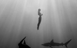 דוגמנית הפלייבוי ששחתה עם כרישים בעירום