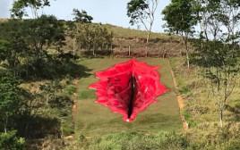 """הפסל """"דיווה"""" בברזיל"""