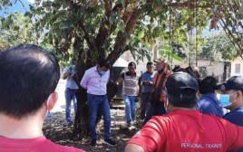 ראש העיר ממקסיקו קשור לעץ
