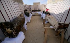 התגלית הארכיאולוגית במצרים