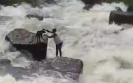 חילוץ הכלב מתוך הנהר