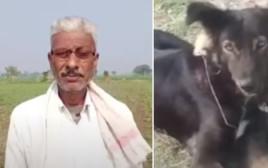החקלאי והכלב ג'קי